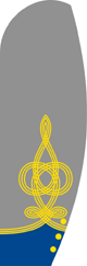 CSMC Cuffs Colonel.png