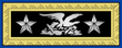 A FlagOfficer Strap.png